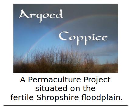 Argoed Coppice
